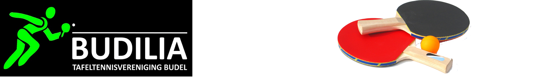 Budilia