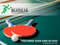 budilia-bord-1024x801